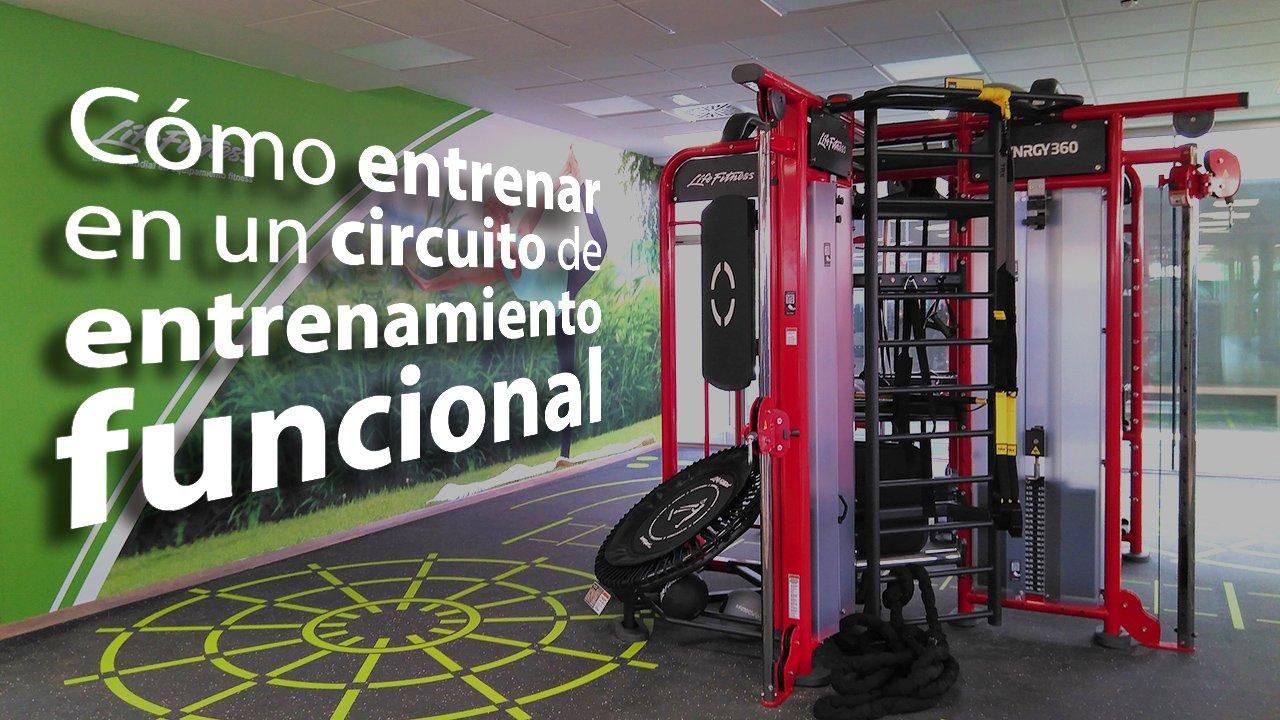 Circuito Gimnasio : La gente de entrenamiento de circuito en el gimnasio foto imagen